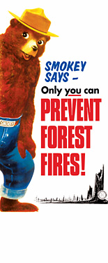 SMA913 Prevent Forest Fires